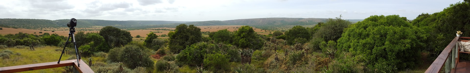 Woodbury Tented Camp View