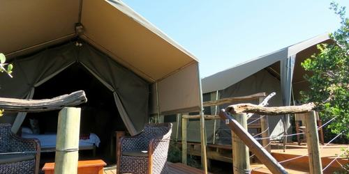 Amakhala Eastern Cape Safari Accommodation Woodbury Tent Family Double Min